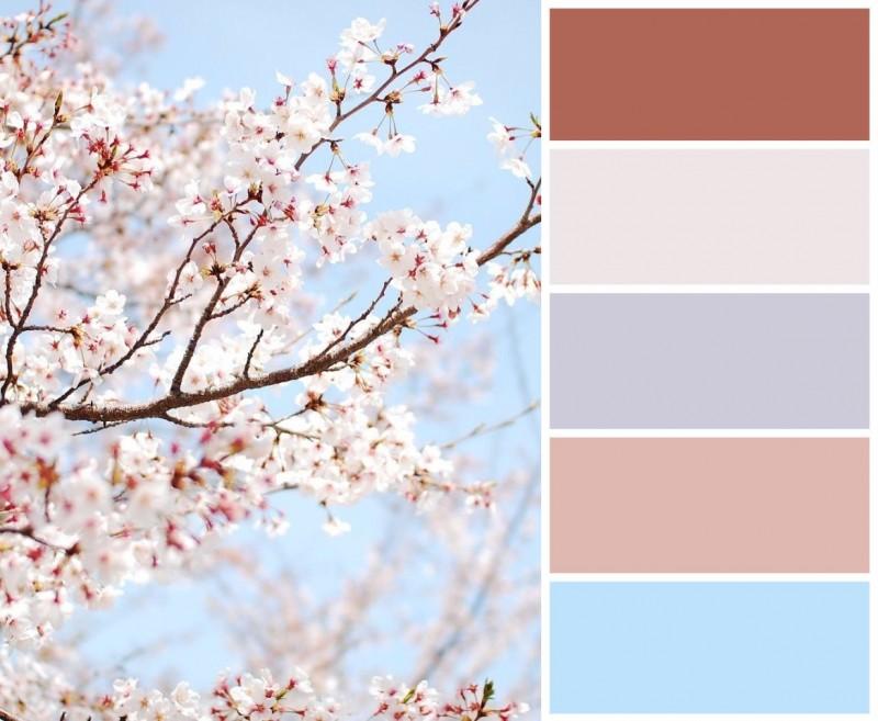 Цветовые сочетания для вдохновения 4