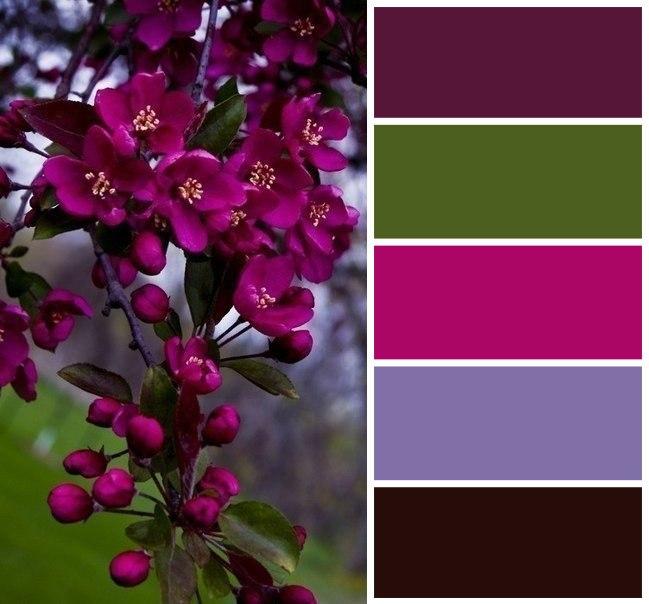Цветовые сочетания для вдохновения 5