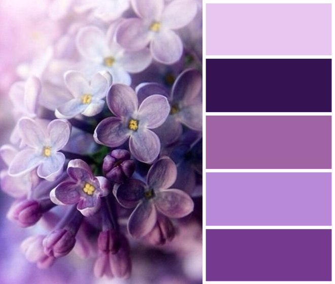 Цветовые сочетания для вдохновения 0